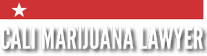 California Marijuana Lawyer